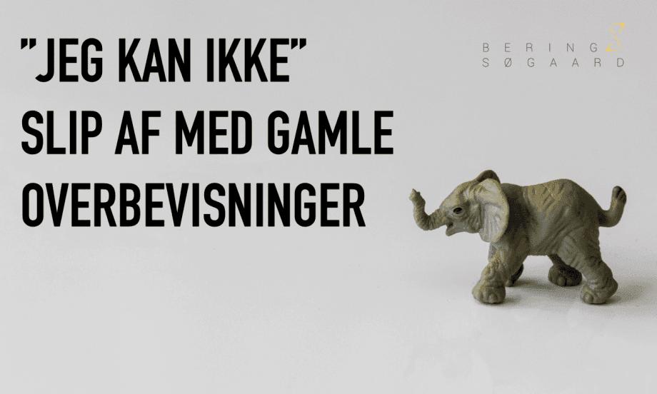Slip af med gamle overbevisninger - Bering & Søgaard